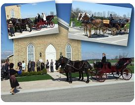 Humes Horse and Carriage Rides - Click here to visit our website!