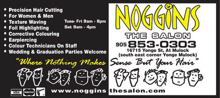 NOGGINS The Salon - Click Here To Visit Our Website!
