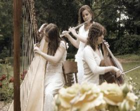 The Soenen Sisters. Musical trio of harp, flute and cello - Click here to visit our website!